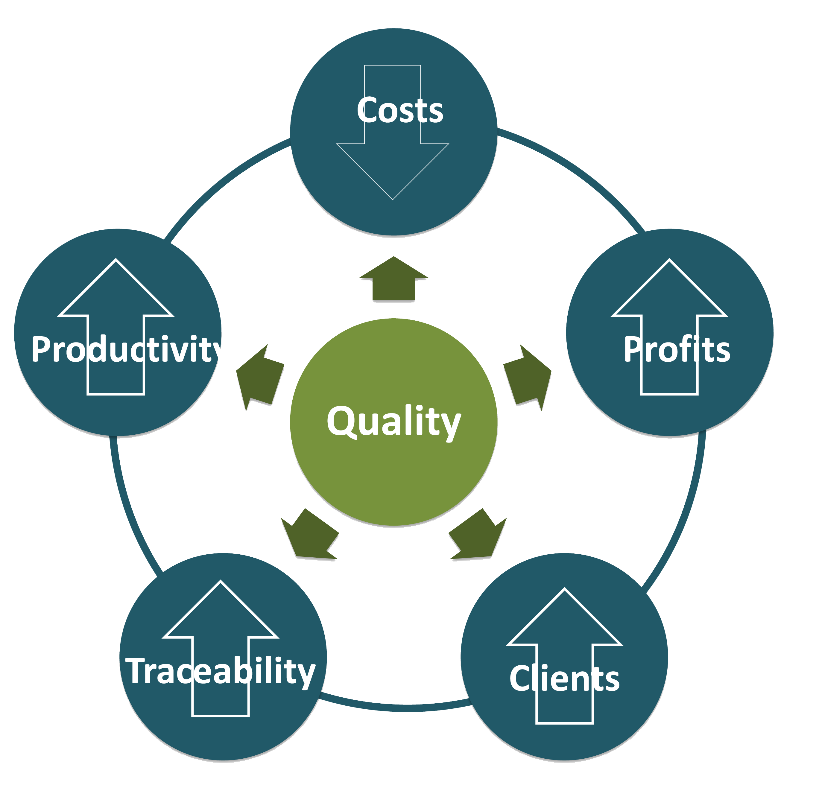 Quality Assurance Images Holtec International -...